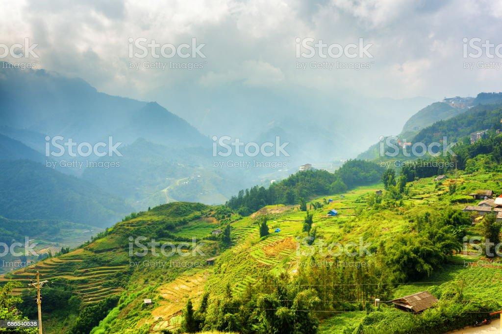 Beautiful view of rice terraces at highlands. Sapa, Vietnam foto stock royalty-free