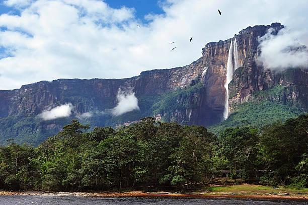 a beautiful view of salto angel - venezuela stock photos and pictures