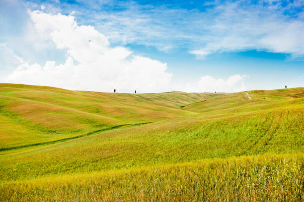 Beautiful view of scenic Tuscany landscape in Val d'Orcia, Italy stock photo