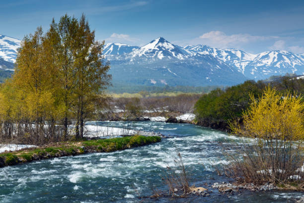 Beautiful view of spring mountain river in Kamchatka Peninsula Beautiful spring landscape of Kamchatka Peninsula: view of mountain Paratunka River on a sunny day. Eurasia, Russian Far East, Kamchatka Region. kamchatka peninsula stock pictures, royalty-free photos & images
