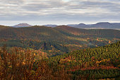 Beautiful view of the Palatinate forest in Germany. Colorful autumn landscape.