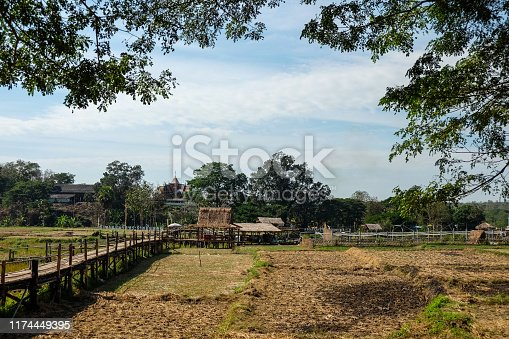 A beautiful view of the bamboo bridge, Conveys rural life and simple living.