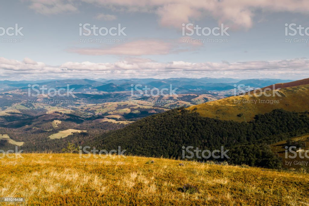 Beautiful view of the Carpathian mountains in summer. stock photo