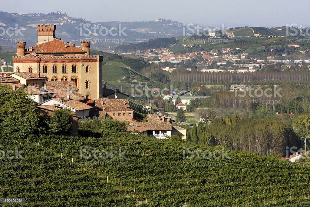 Beautiful view of the Castle of Barolo stock photo
