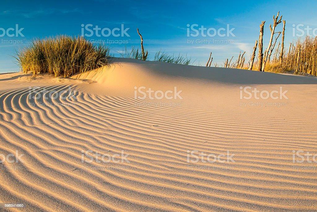 Wunderschöne Ansicht der Dünen an der Küste Lizenzfreies stock-foto
