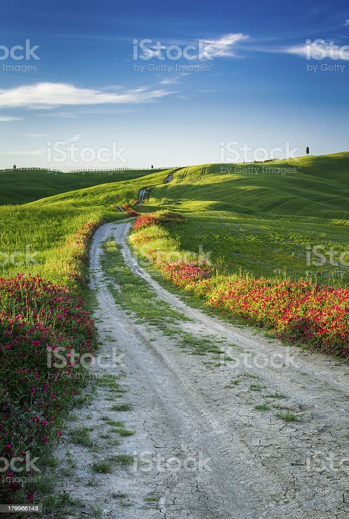 Beautiful view of the country footpath at sunset in Tuscany royalty-free stock photo