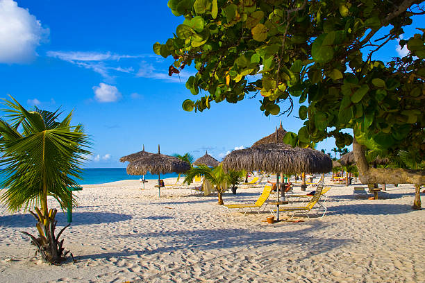 beautiful view of the eagle beach in aruba - aruba stockfoto's en -beelden