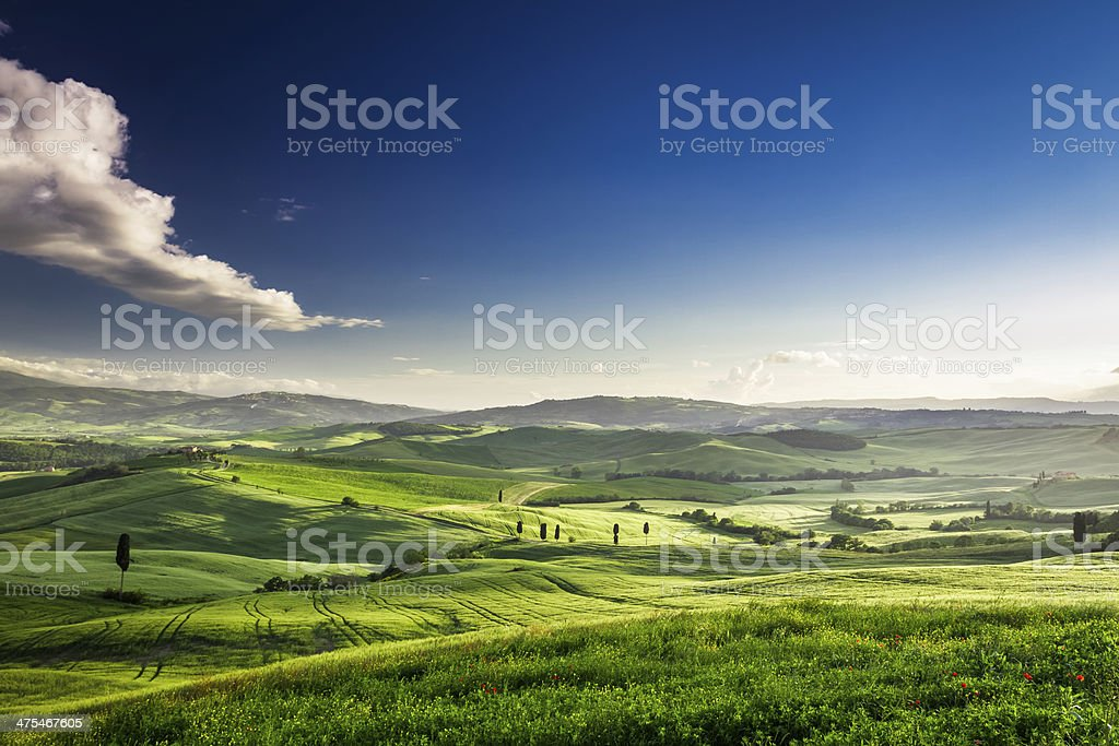 Beautiful view of the green valley at sunset, Tuscany stock photo