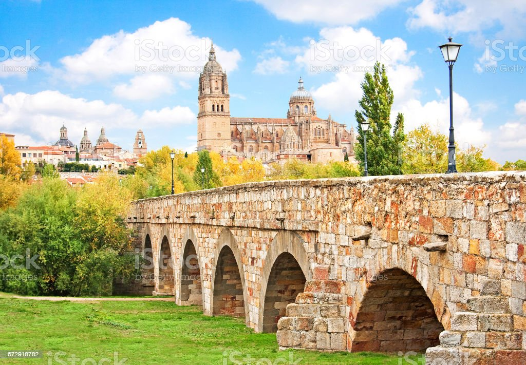 Beautiful view of the historic city of Salamanca with New Cathedral and Roman bridge, Castilla y Leon region, Spain stock photo