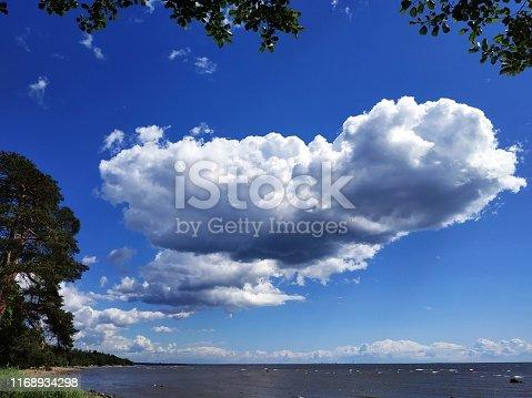 istock Beautiful view of the horizon, water, cloud 1168934298