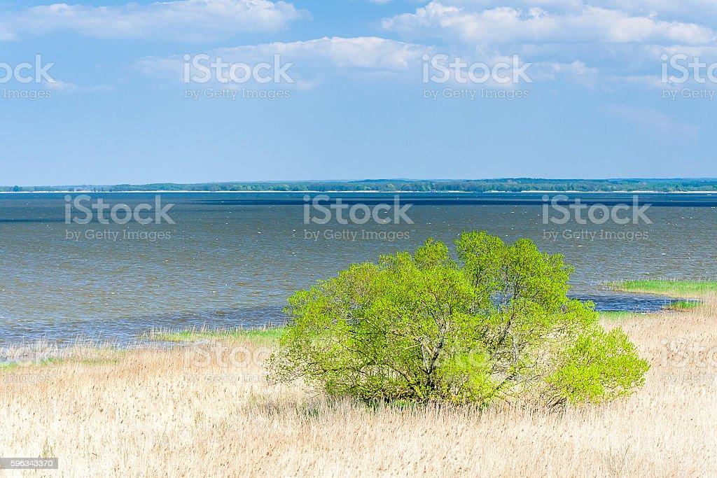 Beautiful view of the lake Lebsko Lizenzfreies stock-foto