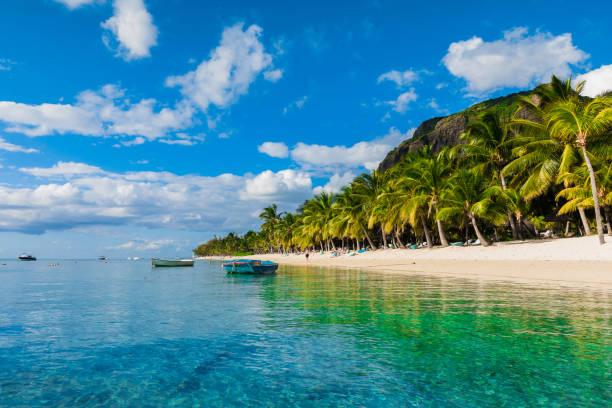 Schöne Aussicht auf den Luxusstrand von Mauritius. Transparenter Ozean, weißer Sandstrand, Palmen und blauer Himmel – Foto