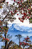 Beautiful landscape photo of mountains from Poon hill in Nepal