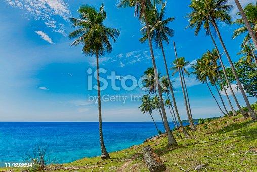 1145102719istockphoto Beautiful view of tropical beach, coconuts tree, beautiful blue sky 1176936941