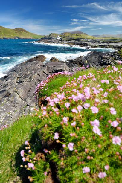 Schöne Aussicht auf Valentia Island Leuchtturm in Cromwell Point. Orte, die einen Besuch auf dem Wild Atlantic Way wert sind. County Kerry, Irland. – Foto