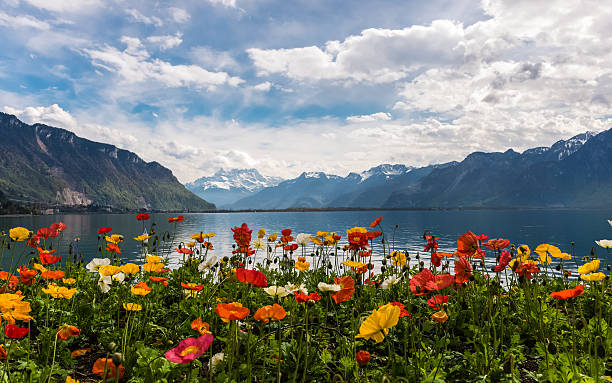 Beautiful view on the Alps Mountains and Lake Leman stock photo