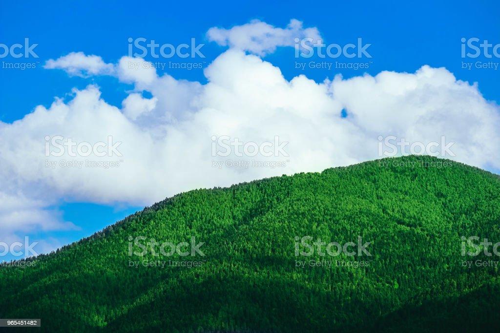 美麗的景色在高高的青山上, 在藍天的背景下。風景秀麗的山景樂園。 - 免版稅Pinaceae圖庫照片
