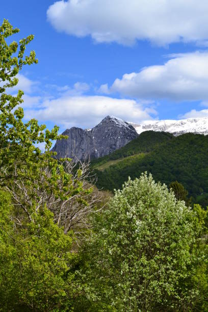 Beautiful view to Grignone or Grigna Settentionale from Cainallo of Esino Lario in a spring sunny day. stock photo