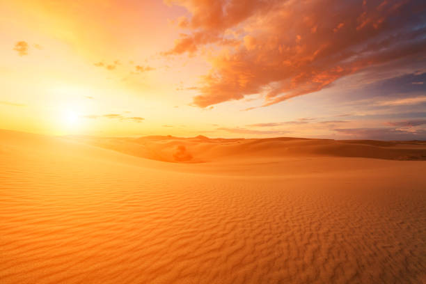 Beautiful views of the Gobi desert. Mongolia stock photo