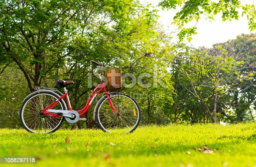Beautiful vintage bicycle in park