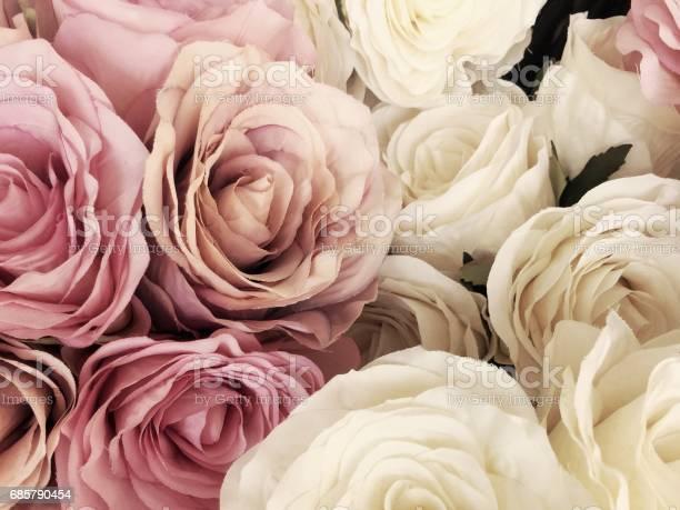 Beautiful vintage rose background white pink purple violet cream picture id685790454?b=1&k=6&m=685790454&s=612x612&h=zyf0ogrgxz9w6nsx kkr9x4ejax5eycyjvgxblmeasq=