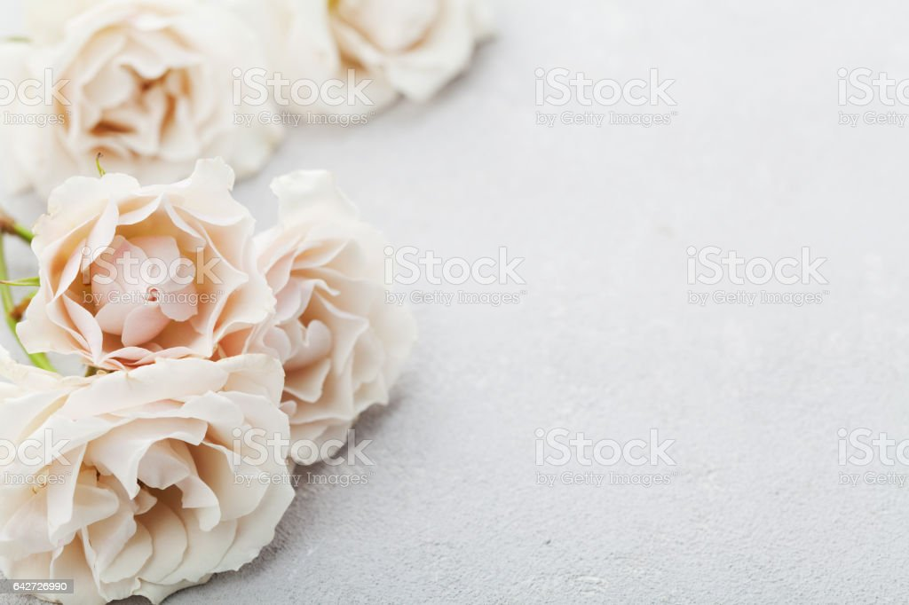 Beautiful vintage rose flowers on gray stone table. Floral border. stock photo