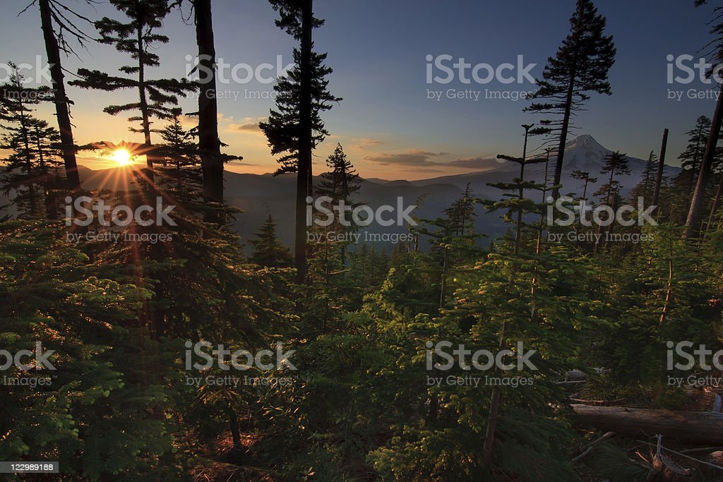 Beautiful Vista of Mount Hood in Oregon, USA. royalty-free stock photo