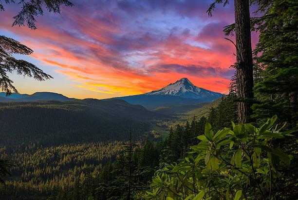 wunderschöner aussicht auf mount hood in oregon, usa - pacific crest trail stock-fotos und bilder