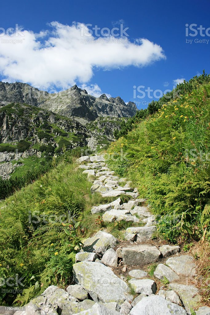 Beautiful walkway to the mountains stock photo