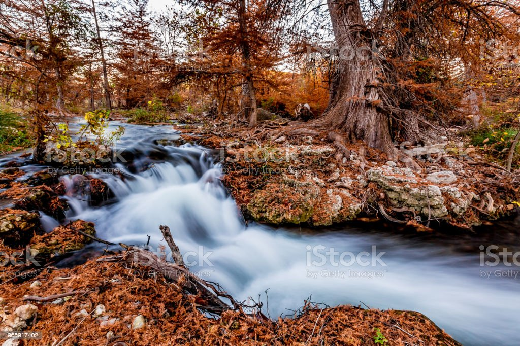 Prachtige waterval en Fall gebladerte aan de rivier van de Guadalupe, Texas. - Royalty-free Bald Cypress Tree Stockfoto