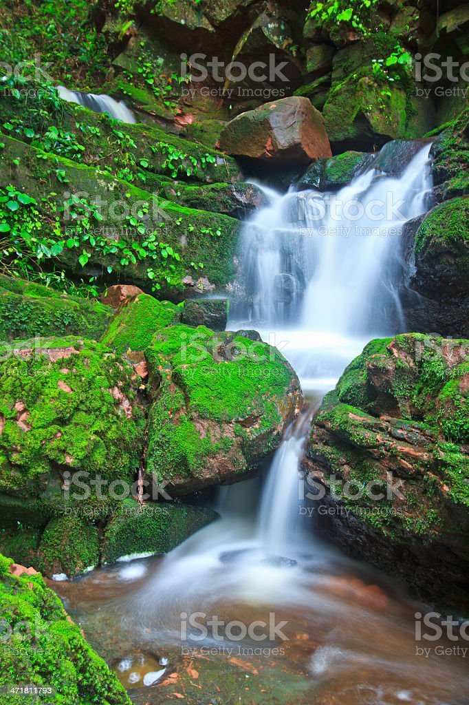 Beautiful  waterfall  asia thailand stock photo