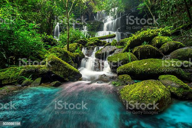 Photo of beautiful waterfall in green forest in jungle