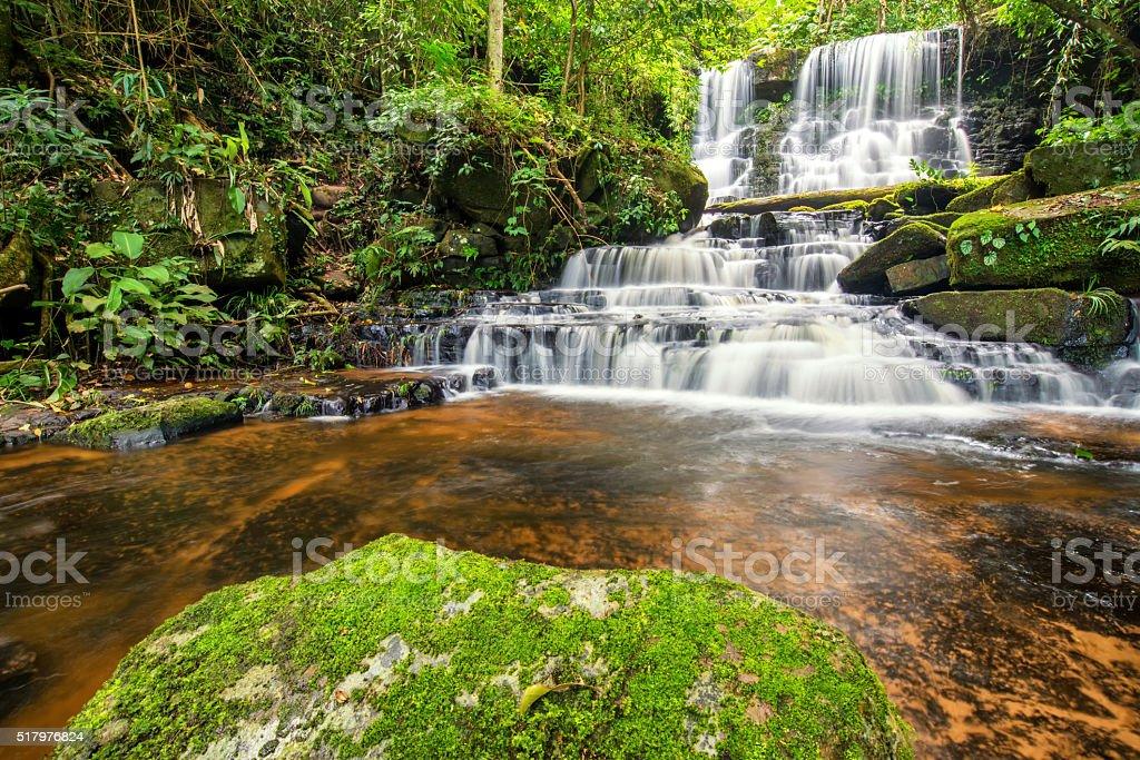 beautiful waterfall in green forest jungle at phu tub berk stock photo