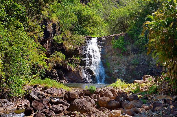 Beautiful waterfall in Waimea Valley on Oahu – Foto