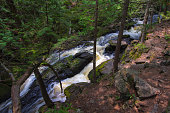 Smalley Falls flows through a canyon in the wilderness of a Wisconsin forest.