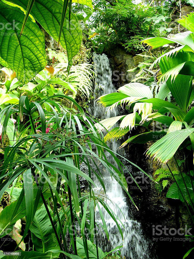 Beautiful Waterfall - Tropical Paradise royalty-free stock photo