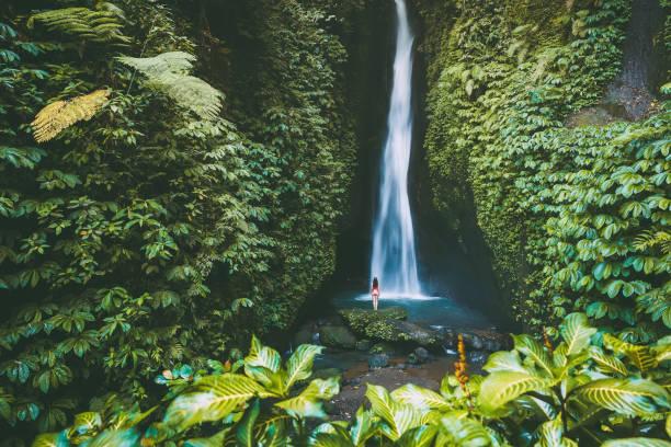Schöner Wasserfall mit tropischen Pflanzen. und Frau Traveller in Bali, Indonesien – Foto