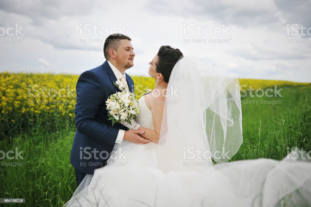 beautiful wedding couple at the field of yellow flowers foto stock royalty-free