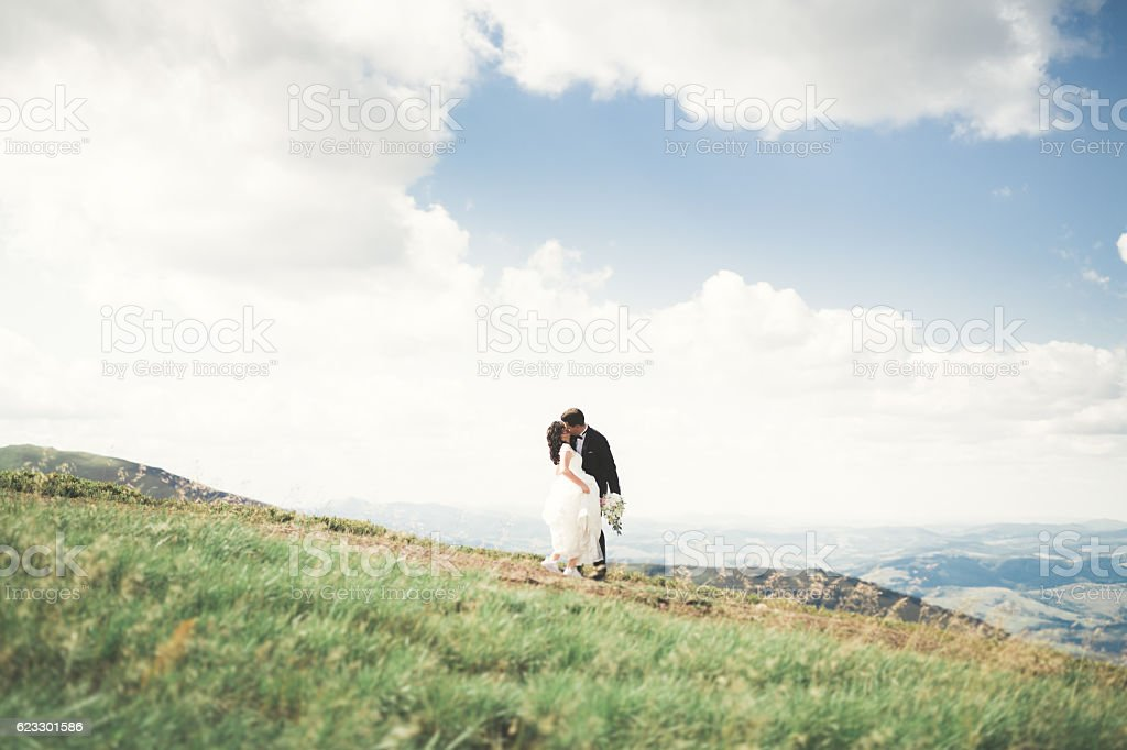 Beautiful wedding couple, bride and groom, in love on the stock photo