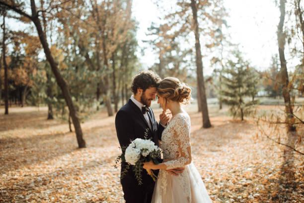 Beautiful wedding couple in park. stock photo