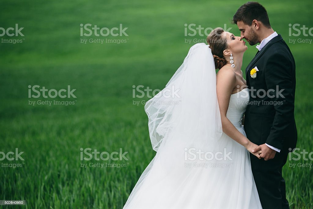 Beautiful wedding couple on nature stock photo