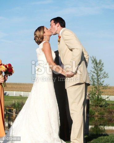 490225014istockphoto Beautiful Wedding Portraits 510724815