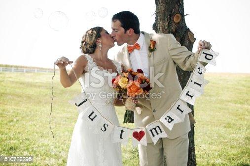 490225014istockphoto Beautiful Wedding Portraits 510726295
