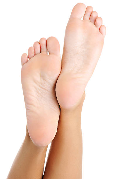 Beautiful well-groomed female  foot and a heel Beautiful well-groomed female a foot and a heel lifted upwards on a white background sole of foot stock pictures, royalty-free photos & images