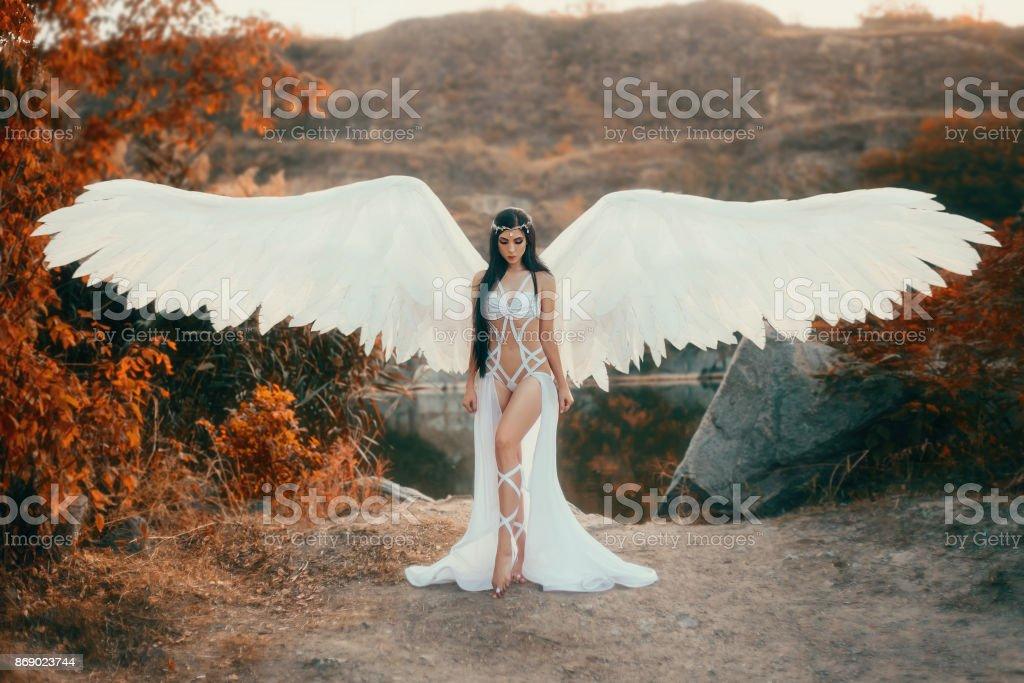 Un bello Arcángel blanco - foto de stock