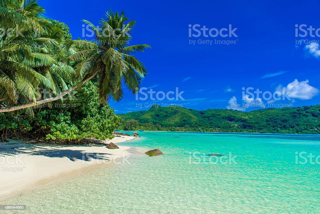 Beautiful white beach on tropical island stock photo