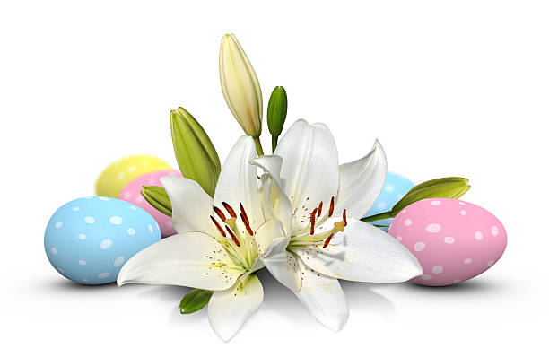 Beautiful white Easter lily flowers and polka dot eggs stock photo