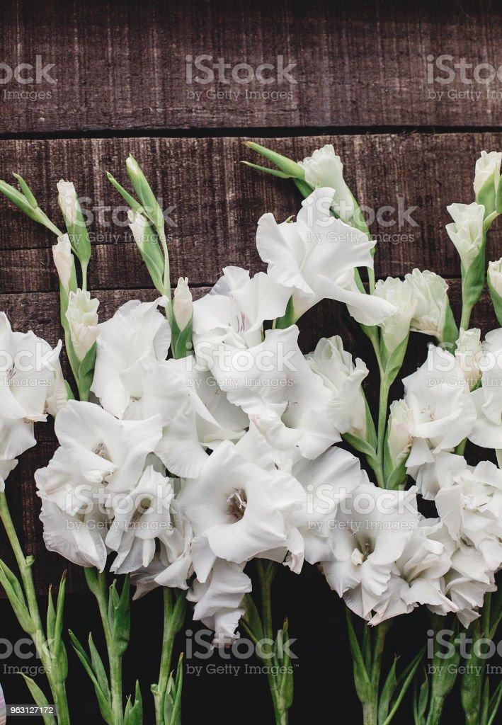 vackra vita gladioluses på rustika trä bakgrund ovanifrån. eleganta Gladiolus på rustik brunt trä, utrymme för text, holiday gratulationskort. blommig platt lekmanna, våren bild - Royaltyfri Bild Bildbanksbilder