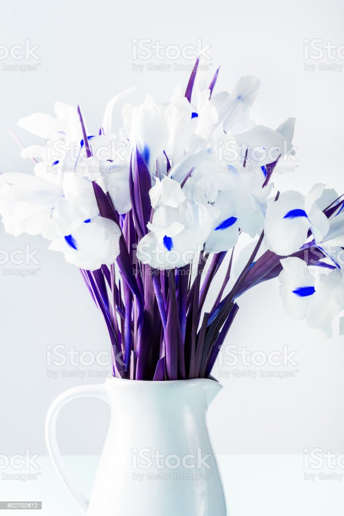 Beautiful White Iris Flowers in the Vase stock photo