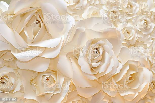 Beautiful white rose background picture id538411195?b=1&k=6&m=538411195&s=612x612&h=9lvwu2uctzw0e cbmh7a6qhk67na63t1fndh3j7tf0g=
